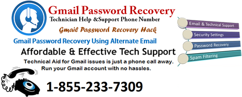 recover a forgotten gmail password